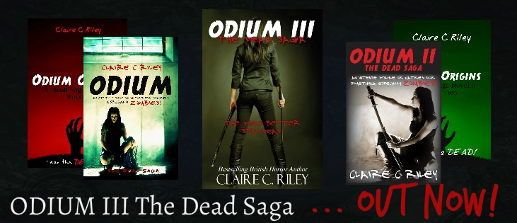 Nina and the Zombies:  How I Met Author Claire C. Riley